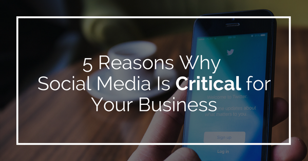 5 Reasons Why Social Media Is Critical for Your Business
